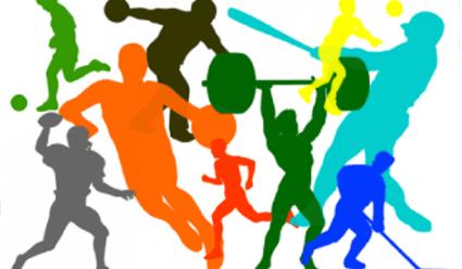 Физкультура и спорт: оптимальна ли система управления?
