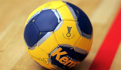 Федерация гандбола России подала заявку на проведение женского ЧЕ-2024